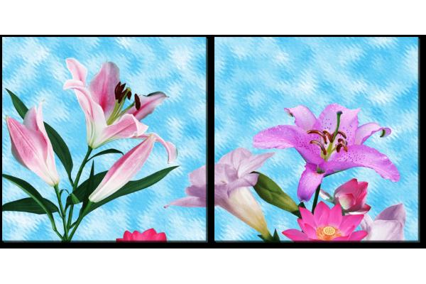 Лилии на голубом фоне