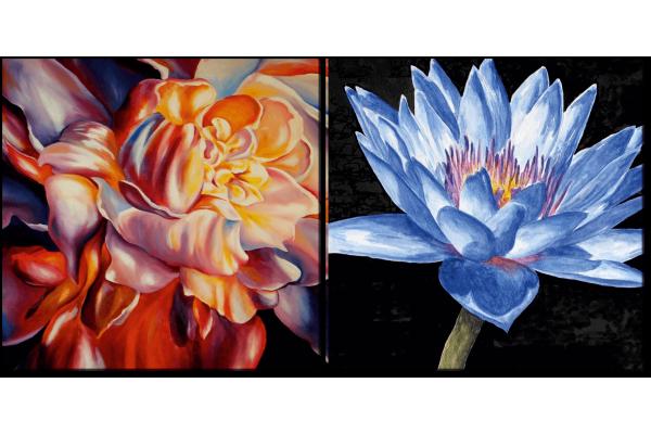 Кувшинка и цветок