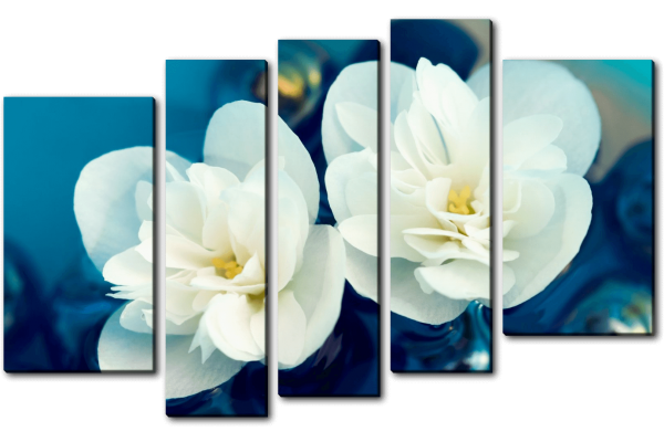 Жасминовые цветы