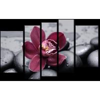 Цветок и камни