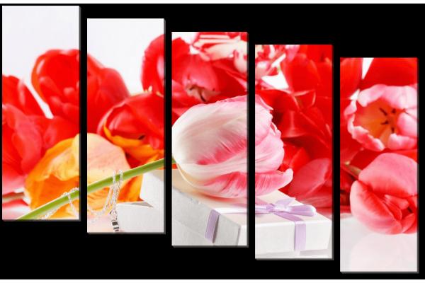 Тюльпаны и подарок