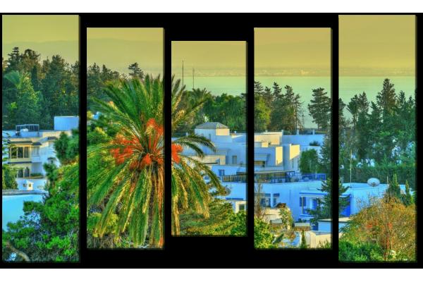 Вид Сиди-Бу-Саида