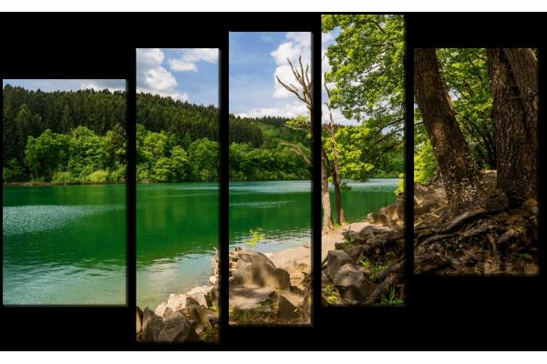 Лесной берег