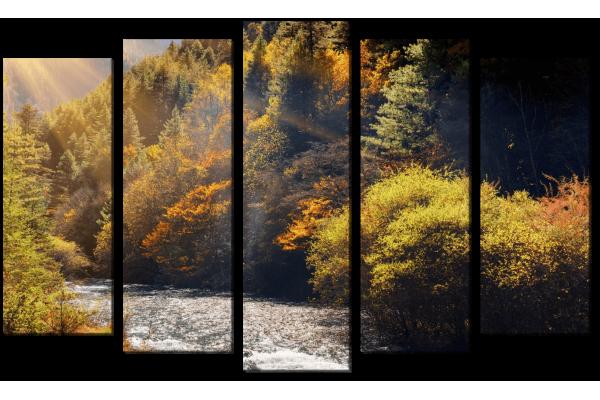 Лесной блеск реки