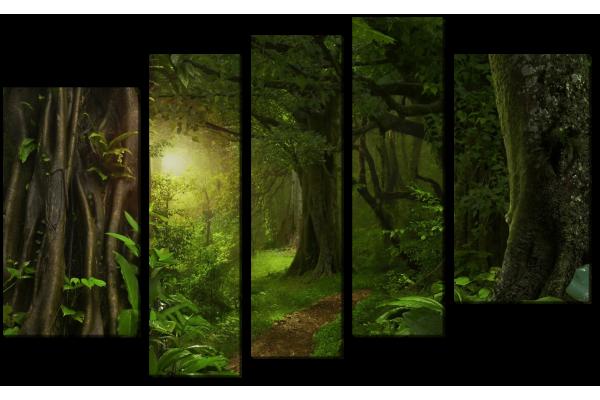 Зеленая тропа