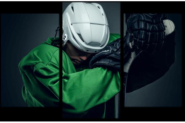 Хоккейный игрок