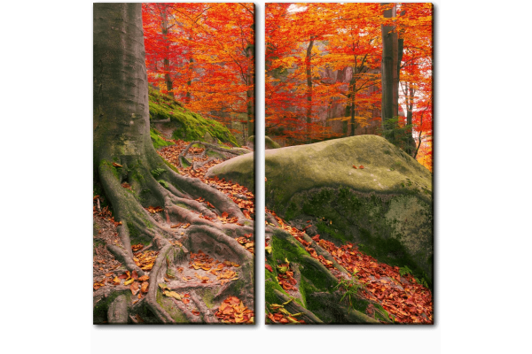 Осенний камень