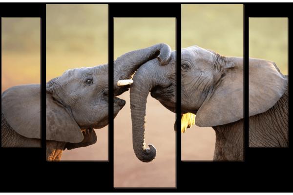 Игра слонят