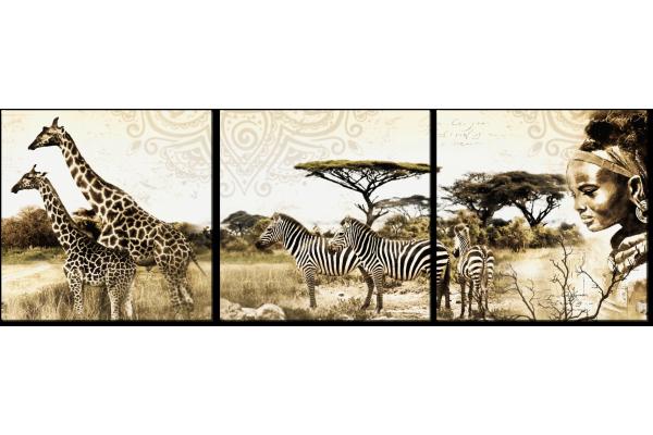 Зебры и жирафы